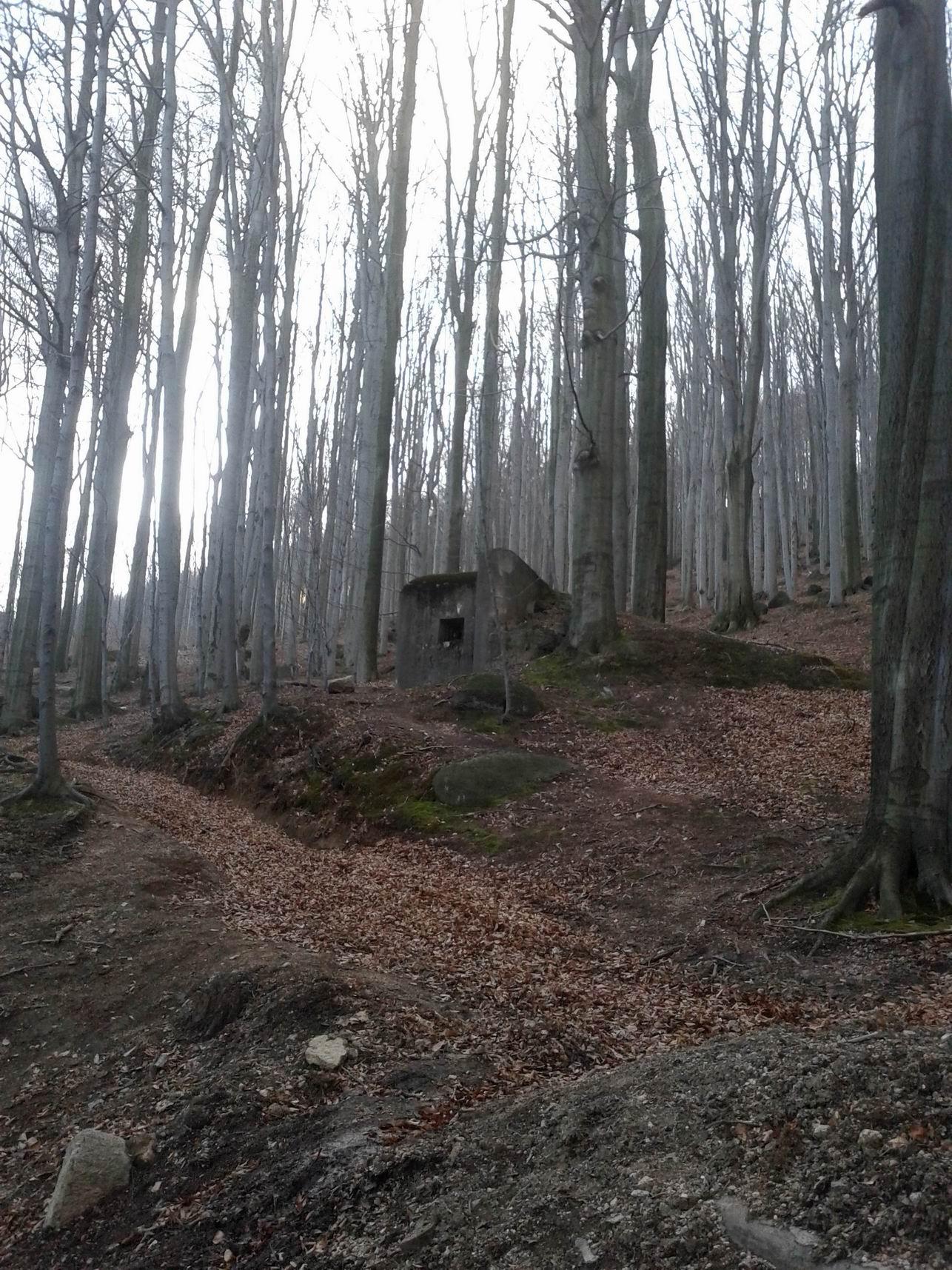 Bunkier ROP niedaleko Liberca